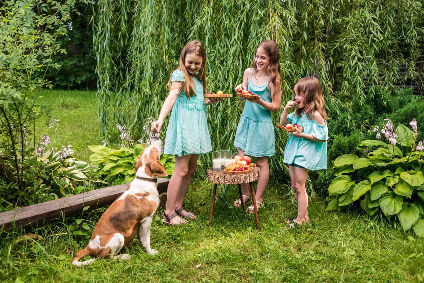 Детский пикник, детские тарелочки